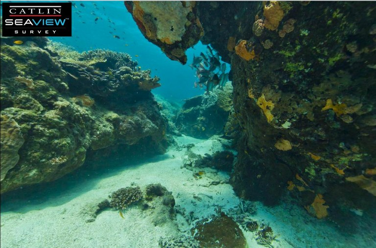 Ixotype - Blog - Google Seaview