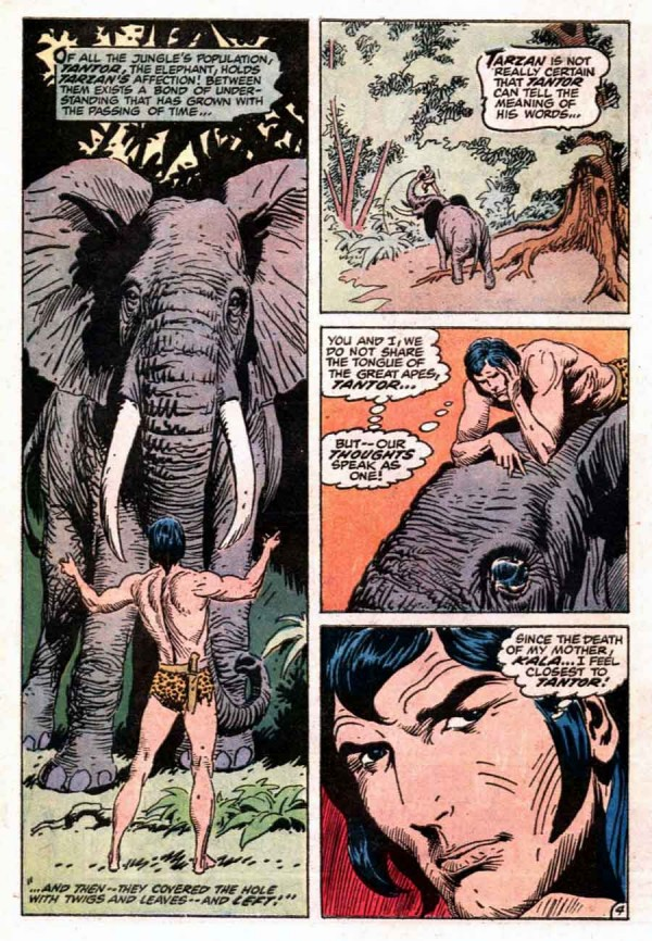 Ixotype - Blog - Joe Kubert - Tarzan