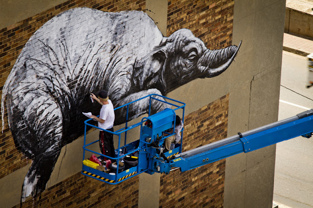 Ixotype - Blog - ROA I  Art Joburg